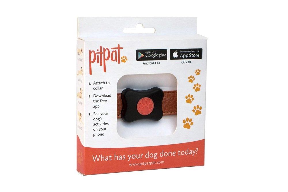PitPat - monitoring aktivity psů
