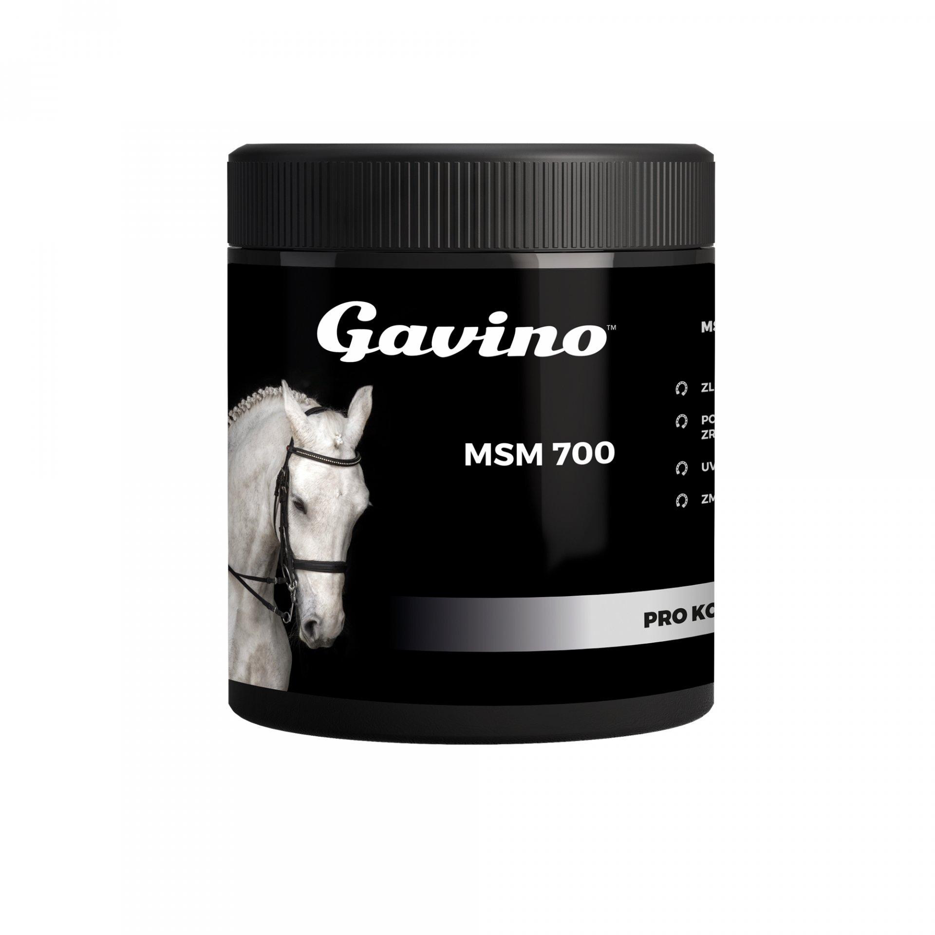Gavino MSM 700g
