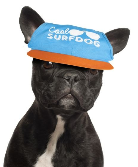 Kšiltovka Surfdog S