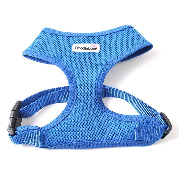 Doodlebone postroj, Airmesh, modrý, velikost XL