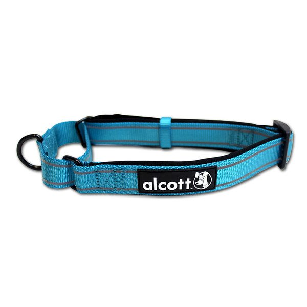 Alcott reflexní obojek pro psy, Martingale, modrý, velikost S