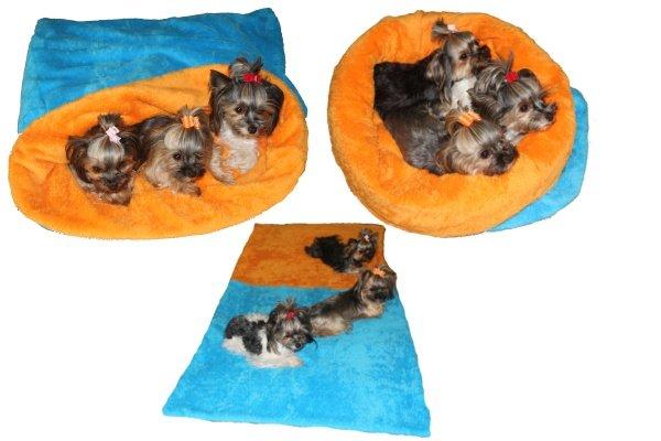Marysa pelíšek 3v1 MAX - modrý/oranžový