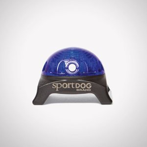 SportDOG Světlo na obojek Beacon, modrá
